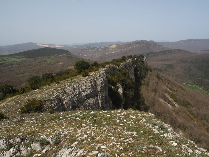 Cortados del Monte Soila