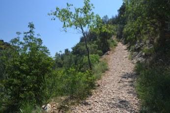 Subida hacia el Camino Natural del Somontano