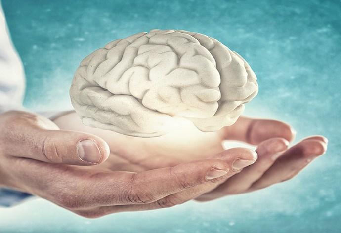 Öğrenme ve Beyin