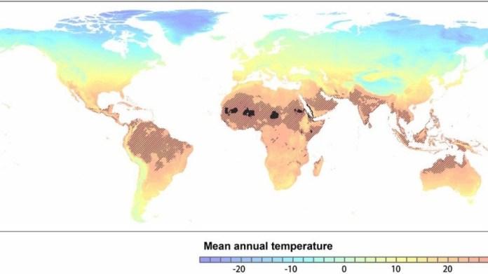 Milyarlarca kişi çöl sıcaklarıyla yaşamak zorunda kalacak