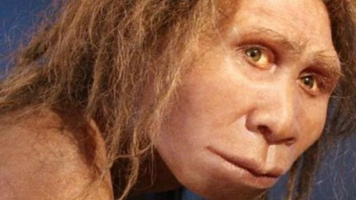 Dmanissi'de 1,8 milyon yıl öncesine ait kalıntılar açığa çıkarıldı