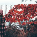 Ekran Resmi 2019-01-09 19.32.51