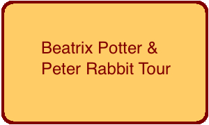 beatrix-potter-peter-rabbit-button