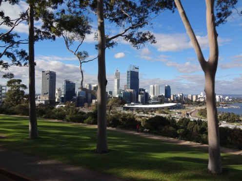 Nice view of the CBD between the trees