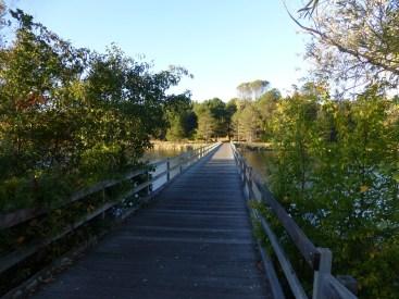 Bridge over the lake at Royal Canberra Golf Club.