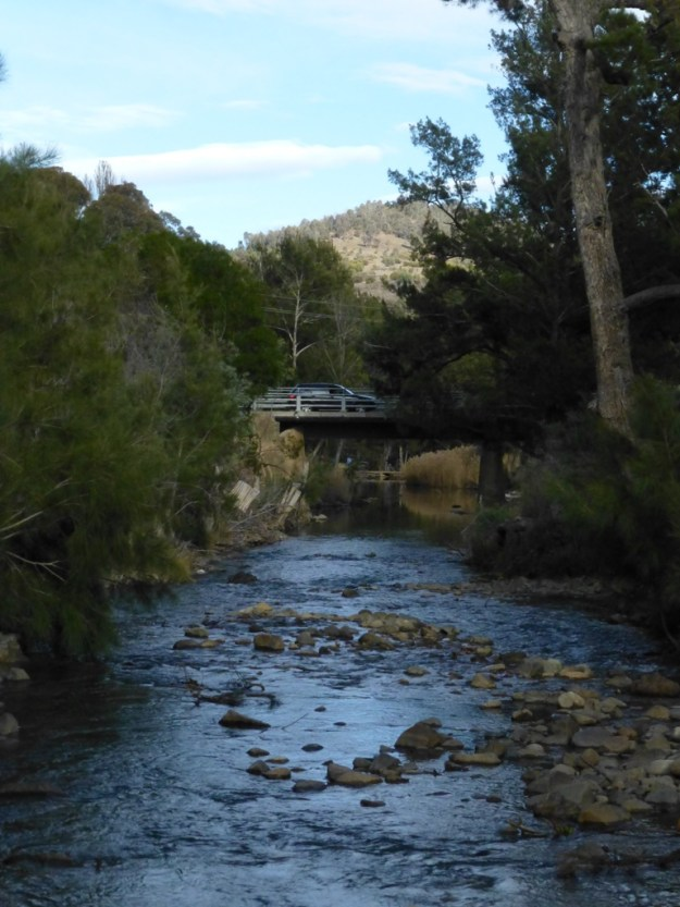 The River Cotter
