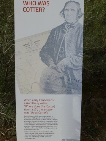 Who was Cotter?