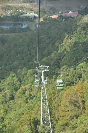 View down the mountain on the Skyrail