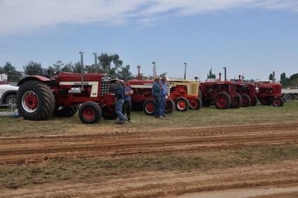 A row of vintage tractors