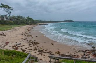 The beach at Narrawallee