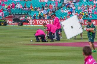 TV presenters in pink