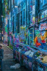 Some of the Street Art in the laneways behind the main streets