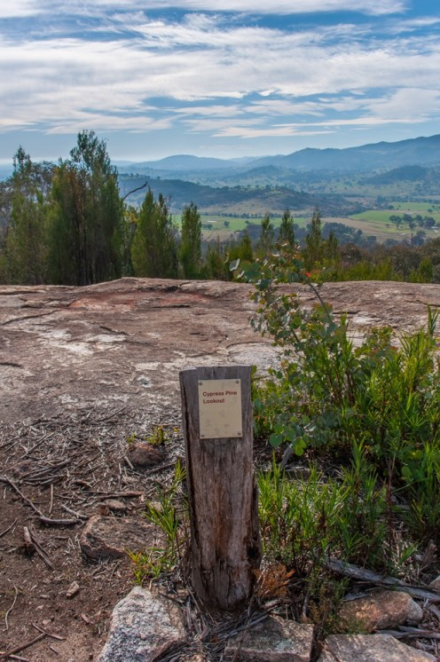 Cypress Pine Lookout
