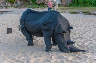 Gift of the Rhinoceros by Mikaela Castledine, WA
