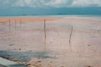 Lumpur yang mengendap di pantai wilayah Nongsa. Endapan lumpur berasal dari pengerukan bukit tak jauh dari pantai untuk pembuatan batu bata.