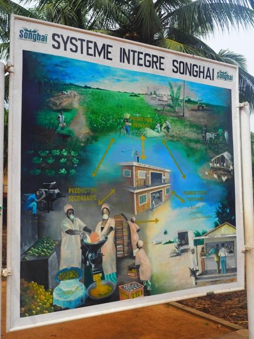 Système Intégré du centre Songhaï