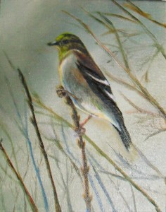 Original oil painting of a finch on a blade of grass by Yeshua's Child Art