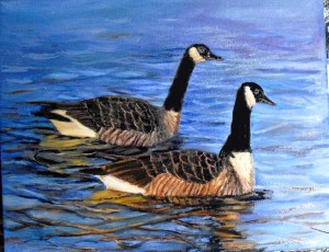 Canadian geese by YeshuasChild Art Studio (c) 2014. 16 X 20 oil painting.