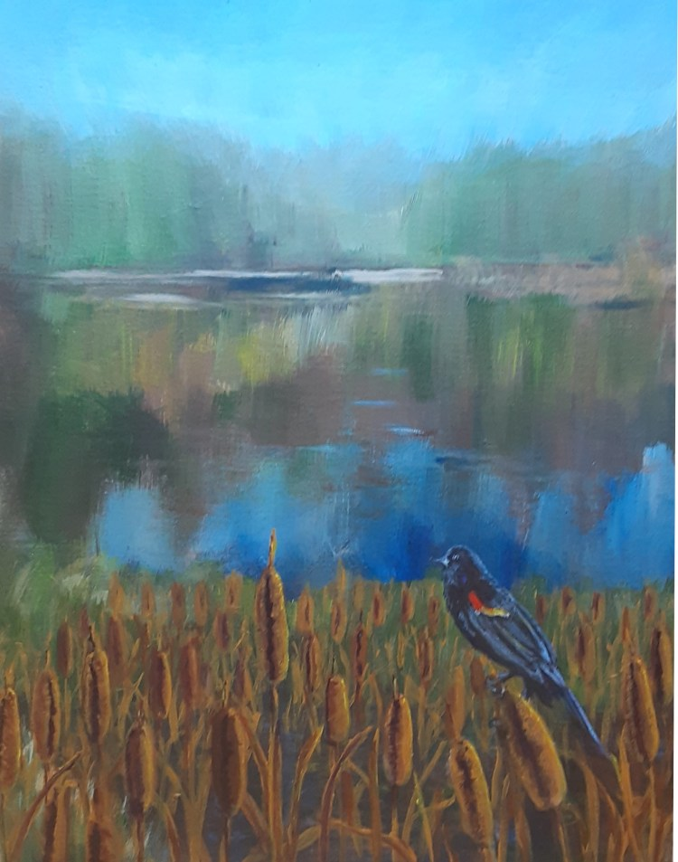 red-winged blackbird in a Marsh in North Michigan, painting by Yeshuas Child Art