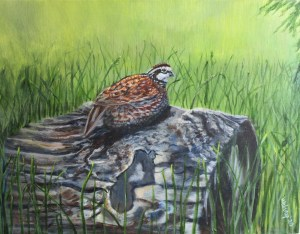 acrylic painting of a bobwhite bird sitting on a stump in a field