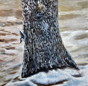 Nuthatch in Early Spring, Michigan acrylic painting
