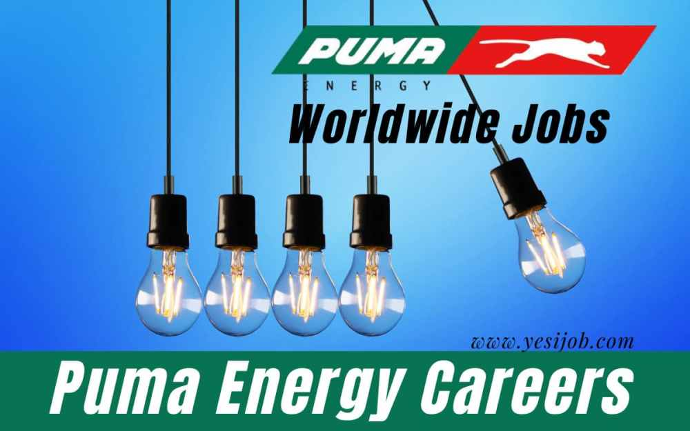 Puma Energy Group Careers