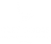 clients-grey_gooselogo