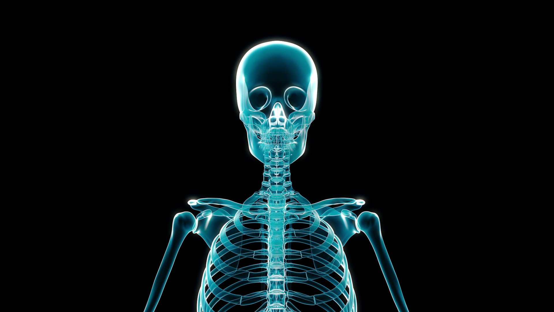 X Ray Wallpapers High Quality