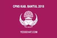 CPNS Kabupaten Bantul 2018