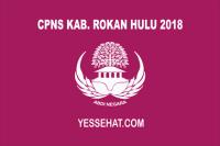 CPNS Kabupaten Rokan Hulu 2018