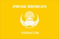 CPNS Kabupaten Seruyan 2018