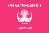 CPNS Kabupaten Trenggalek 2018