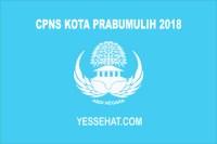 CPNS Kota Prabumulih 2018