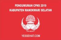 CPNS Kabupaten Manokwari Selatan Tahun 2019