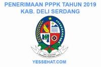 Rekrutmen PPPK / P3K Deli Serdang 2019: Persyaratan, Formasi dan Jadwal