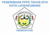 Rekrutmen PPPK / P3K Lhokseumawe 2019: Persyaratan, Formasi dan Jadwal