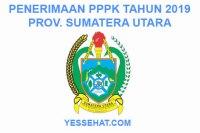 Rekrutmen PPPK / P3K Sumatera Utara 2019: Persyaratan, Formasi dan Jadwal