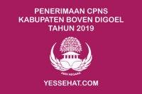 Penerimaan CPNS Kabupaten Boven Digoel Tahun 2019