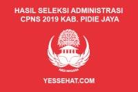 Hasil Seleksi Administrasi CPNS Kabupaten Pidie Jaya Tahun 2019