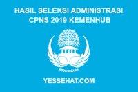 Hasil Seleksi Administrasi CPNS Kemenhub Tahun 2019