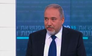 "Israeli Defense Minister Avigdor Lieberman: ""The Europeans bury their heads in the sand"""