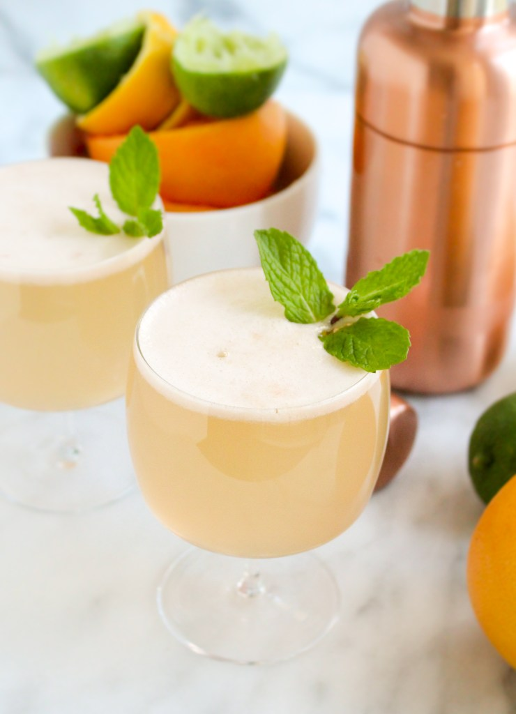 Triple Citrus Gin Spritzer | yestoyolks.com