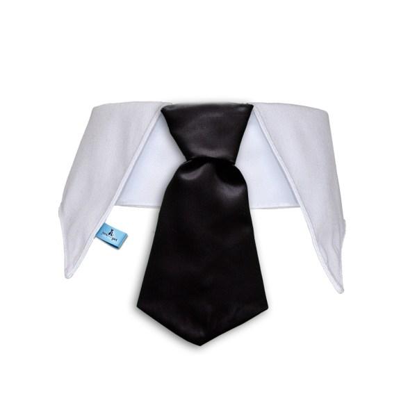 cuello con corbata para perros