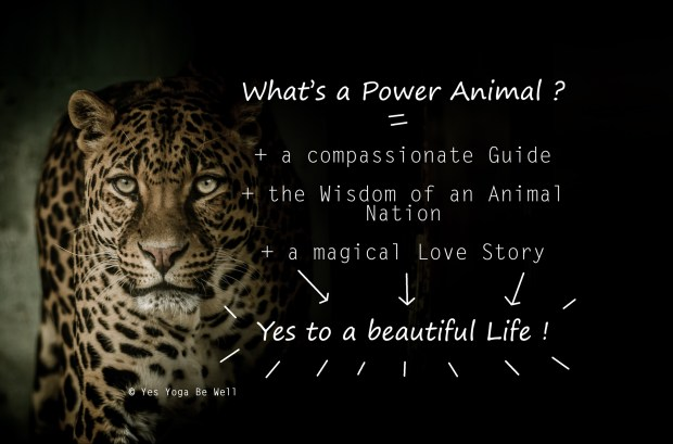 Leopard what is power animal