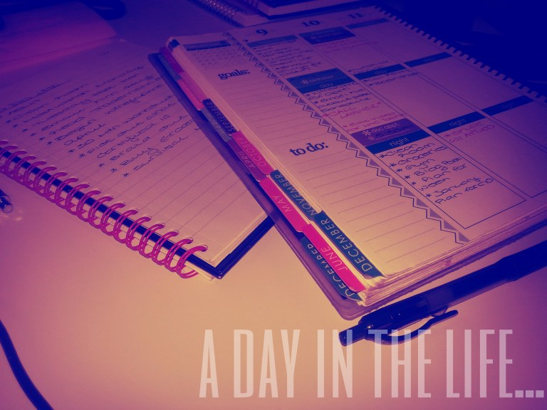 Day 5: A Day In The Life