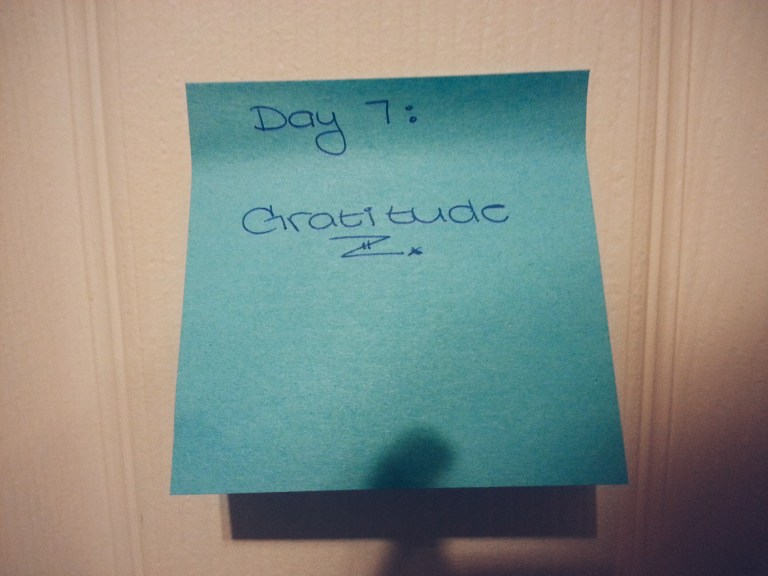 Day 7: Gratitude