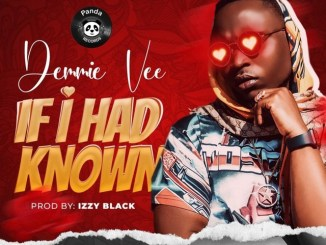 Demmie Vee – If I Had Known