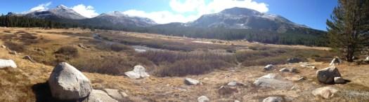 Dana_Meadows_Yosemite_DeGrazio