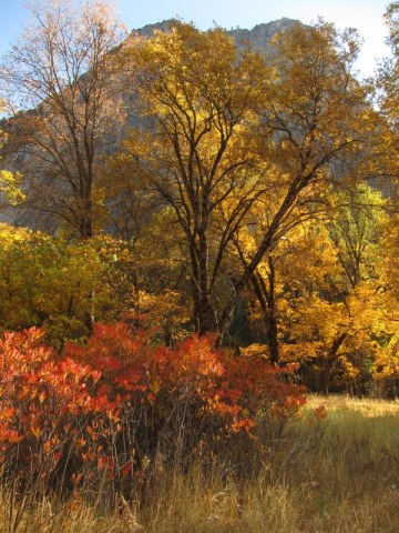 Middle_Cathedral_Yosemite_DeGrazio