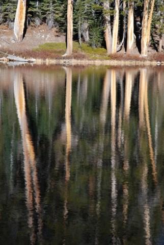 Upper_Merced_Pass4_Yosemite_DeGrazio